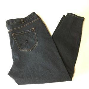 Lane Bryant Skinny Genius Fit Jeans Blue Size 22